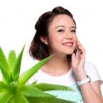 8 Cách làm mặt nạ nha đam tươi trắng da trị mụn và tàn nhang